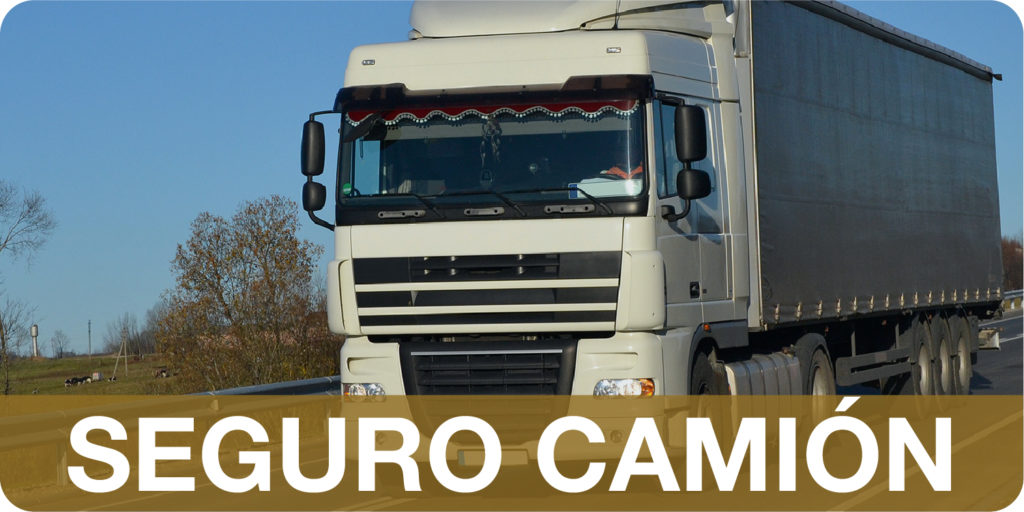 Camion_Img_Productos-01-01