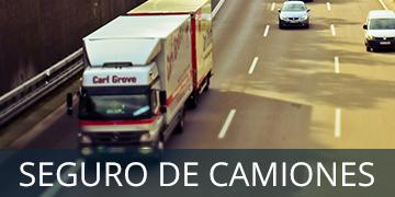 camion-seguro